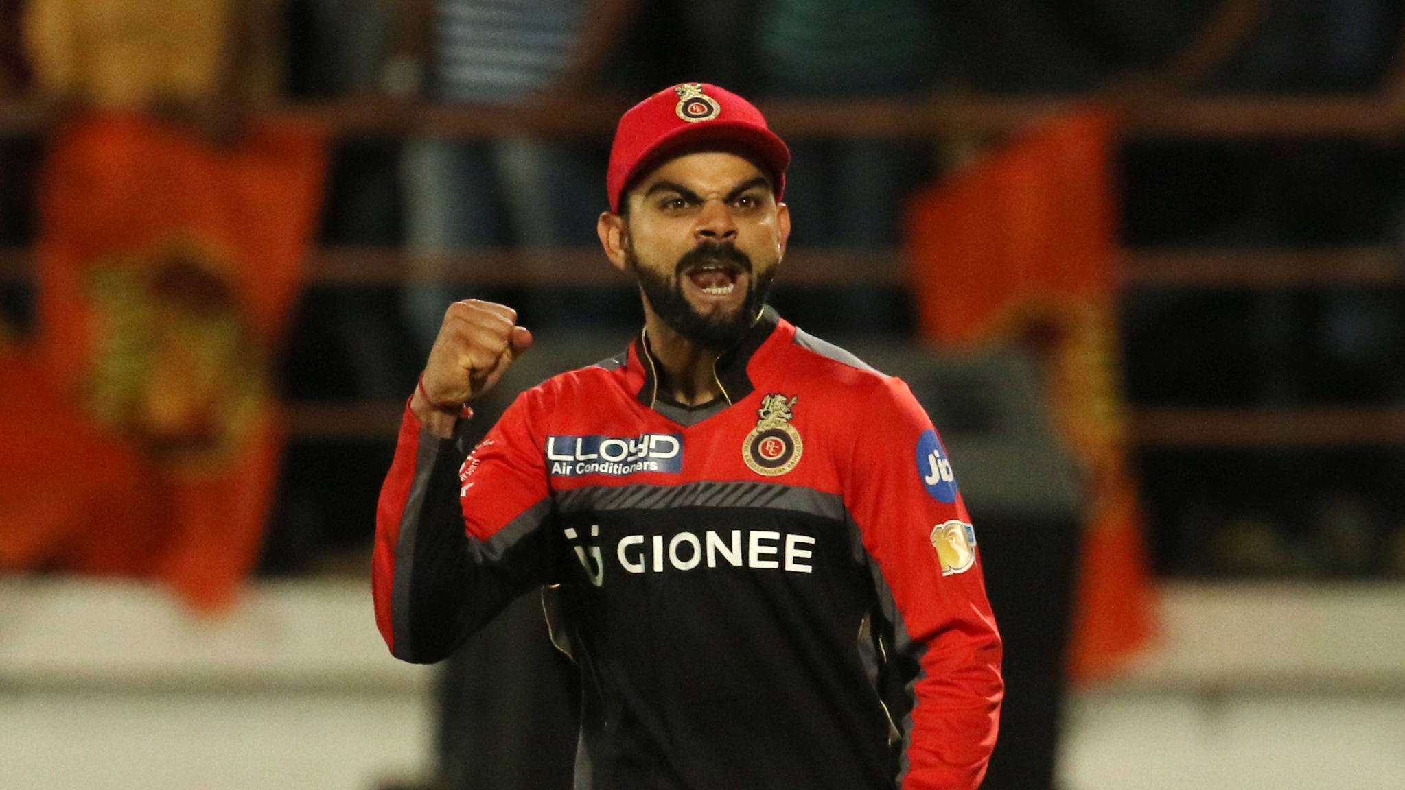 Virat Kohli celebrates the team's win