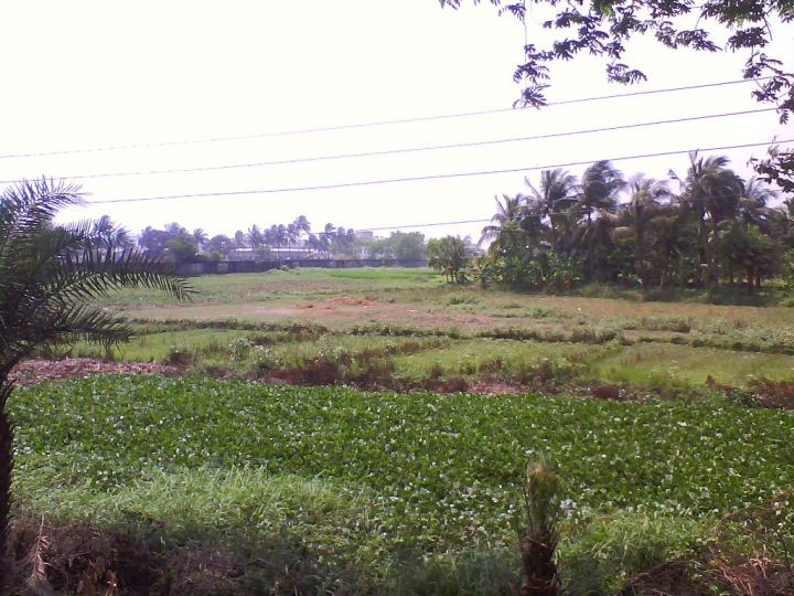 Why Do We Need A Land Acquisition Act? - I