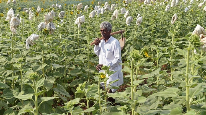 Farm Loan Waivers: A Slippery Slope Into Chaos