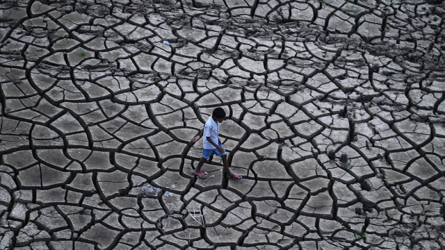 Loan Waivers Are Duds:  India Needs An Exit Policy For Unviable Farming