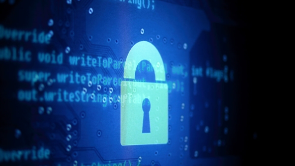 Cyber Security 'Strategic Sector', Domestic Firms To Get Top Priority In Software Procurement