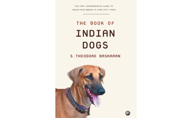 How Much Do You Know About The Indian Breeds Of Dogs?