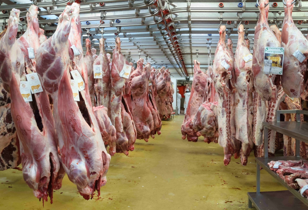 A  slaughter house.  (ET)