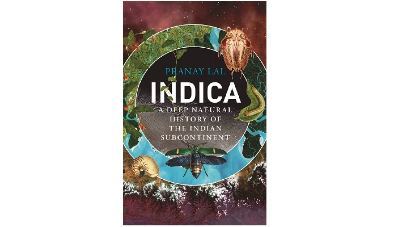 The cover of Indica: A Deep Natural History of the Indian Subcontinent