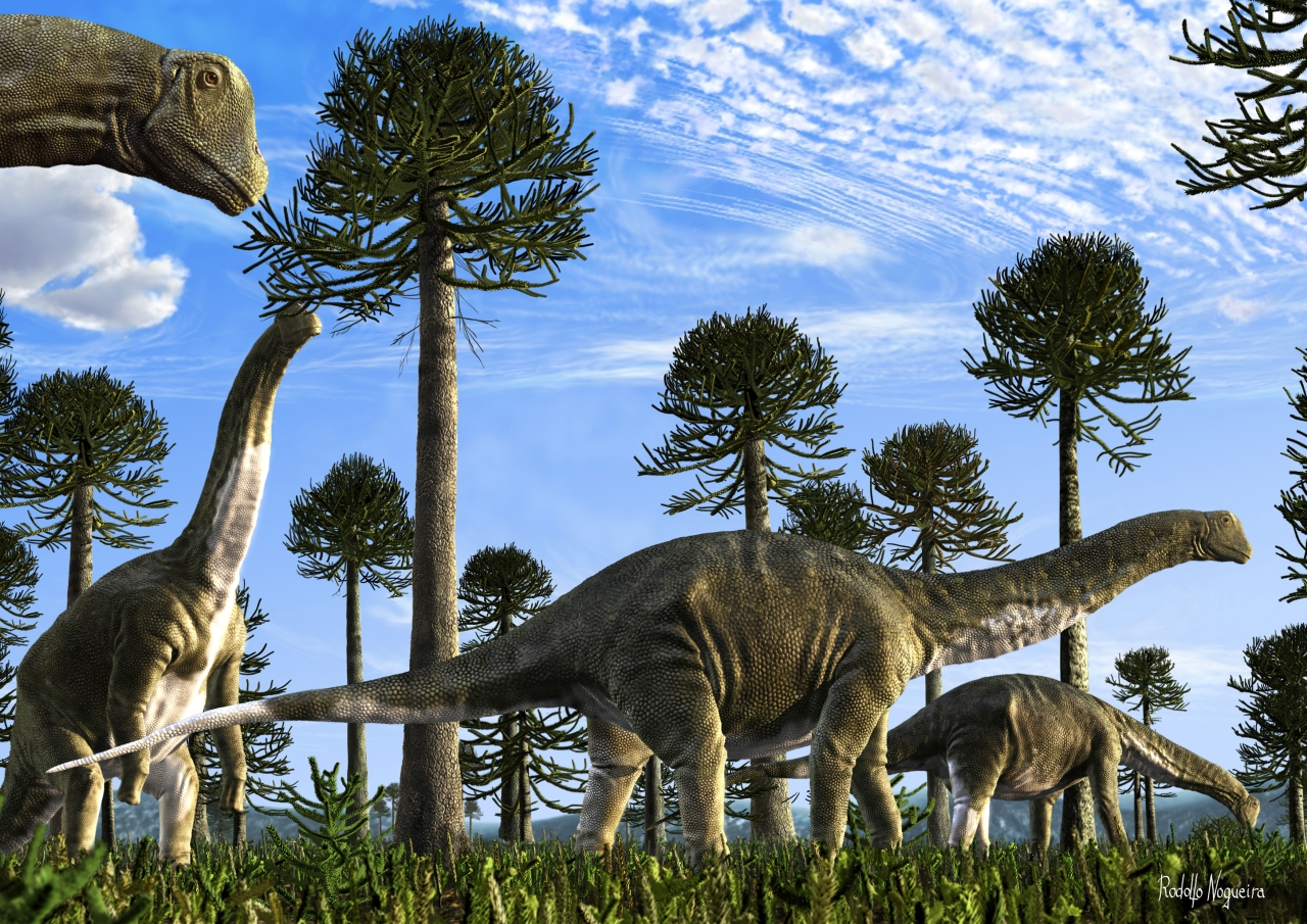 Sauropod of South America (Artwork titled: Titans in down, Copyright: Rodolfo Nogueira)