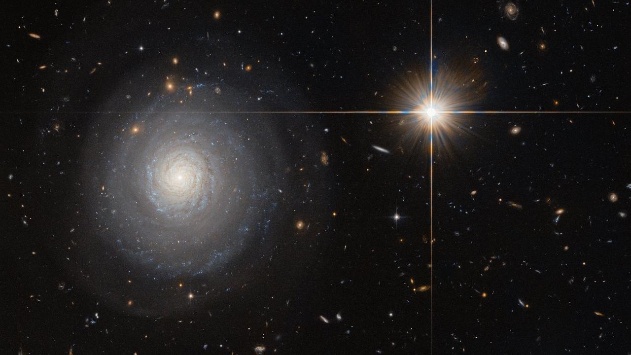 <b>Image credit: ESA/Hubble & NASA and N. Grogin (STScI)</b>