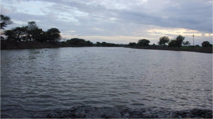 The Waters Flow Again: How The Kumudvathi River Was Revived