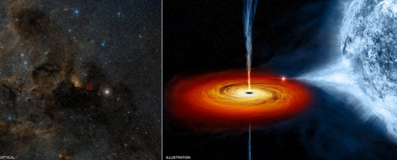 Cygnus X-1: The first discovered black hole: (left) optical image; (right) concept illustration of a spinning black hole devouring the binary star. (NASA)