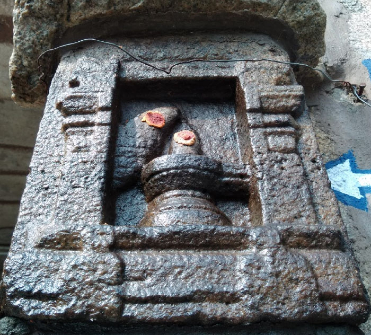 Vishnu incarnated as a fish worshipping Shiva