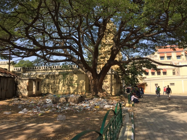 Mysuru: Turning Rubbish Into Profitable Power