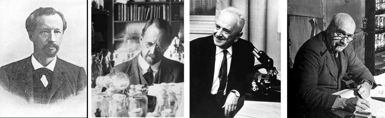 (L to R): Hugo de Vries, Thomas Morgan, Theodosius Dobzhansky, J B S Haldane: The science of life was enriched by the synthesis of Darwinian evolution and Mendelian genetics.