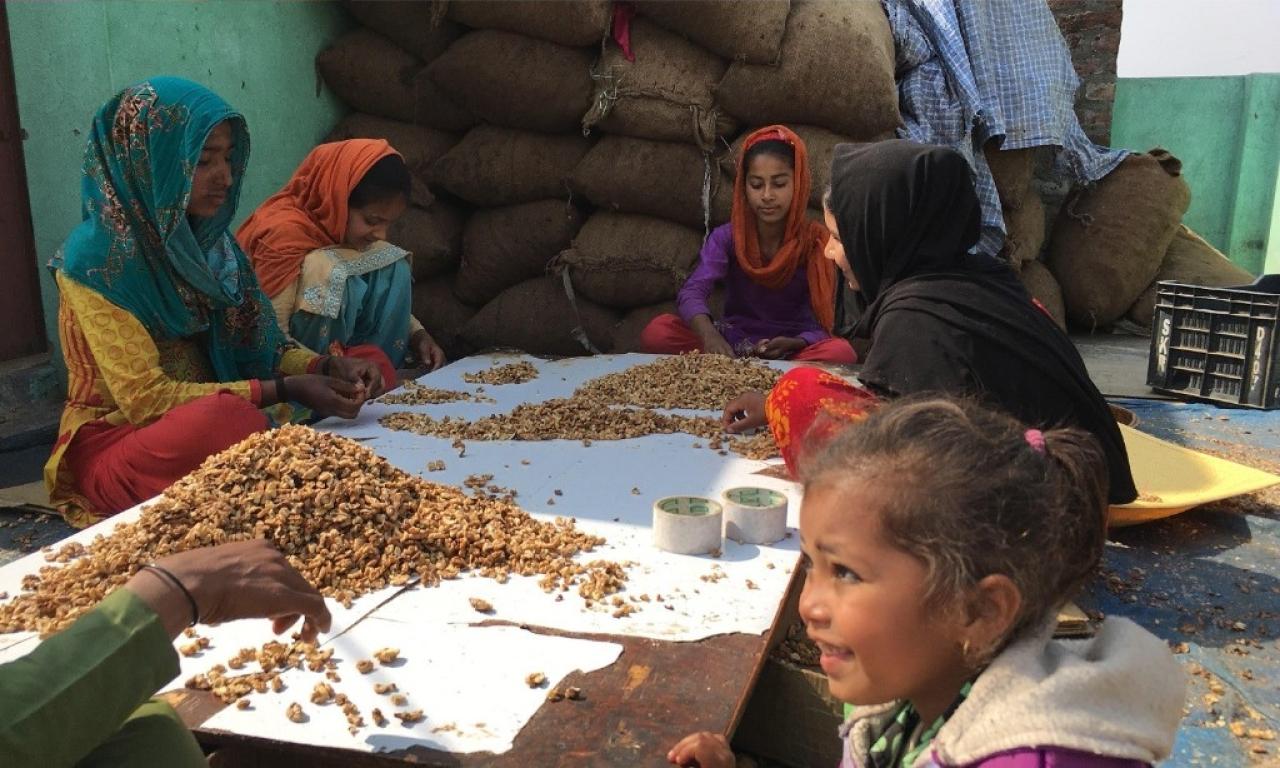 Rohingya girls crack walnuts at a factory