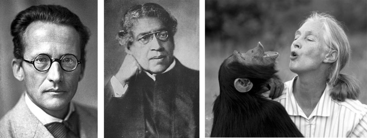 Erwin Schrödinger, Acharya J C Bose and Jane Goodall: There is a meeting point between the mystery of Vedanta and Darwinian science and it has <i>Dharmic</i> implications for the way we relate to other species in the planet.