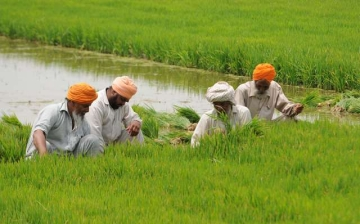 Crop Insurance: Chinks In Modi Government's Most Ambitious Farm Scheme