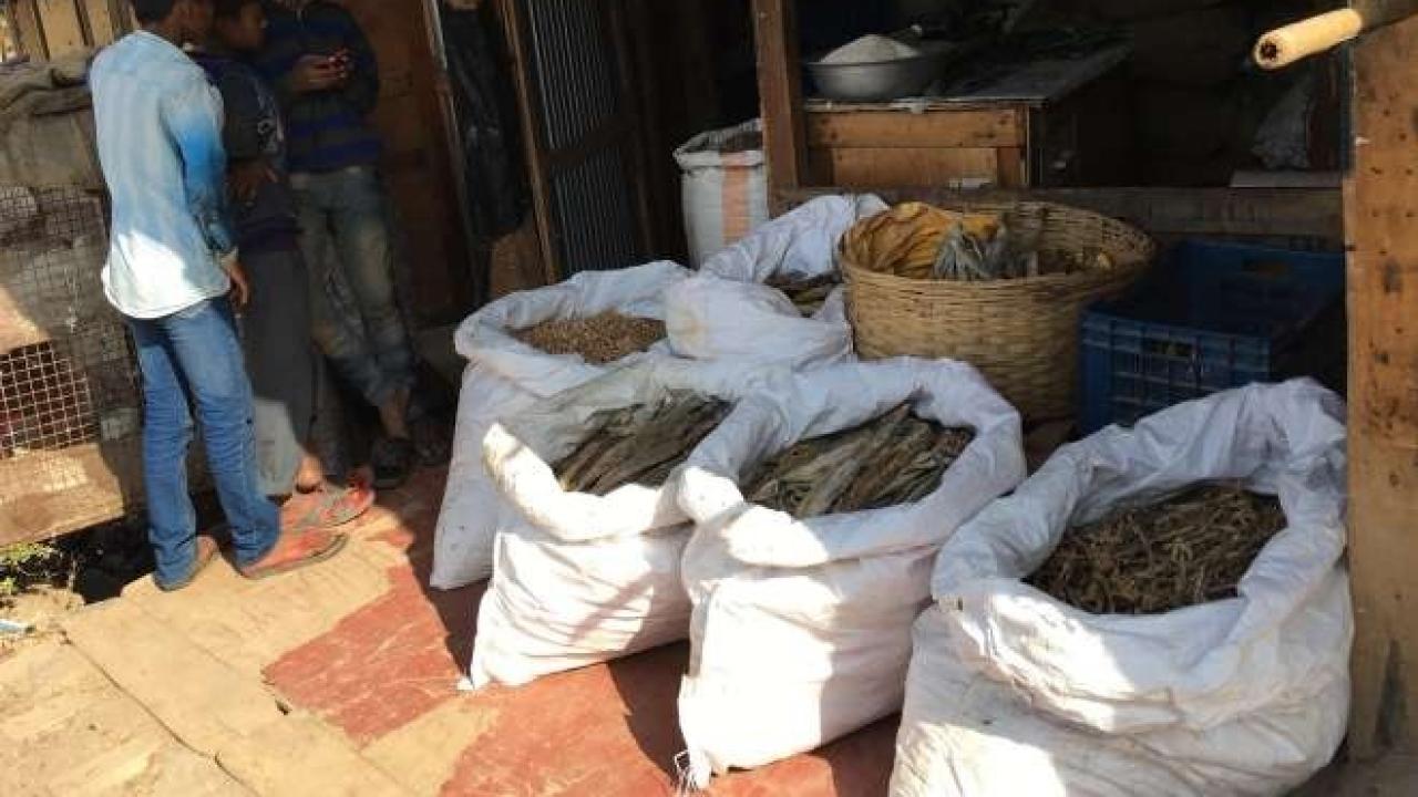 One of the shops in 'Burmi market'