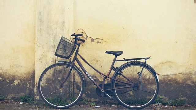 Bringing The Cycle Back: Why India Should Embrace Bicycle-Sharing