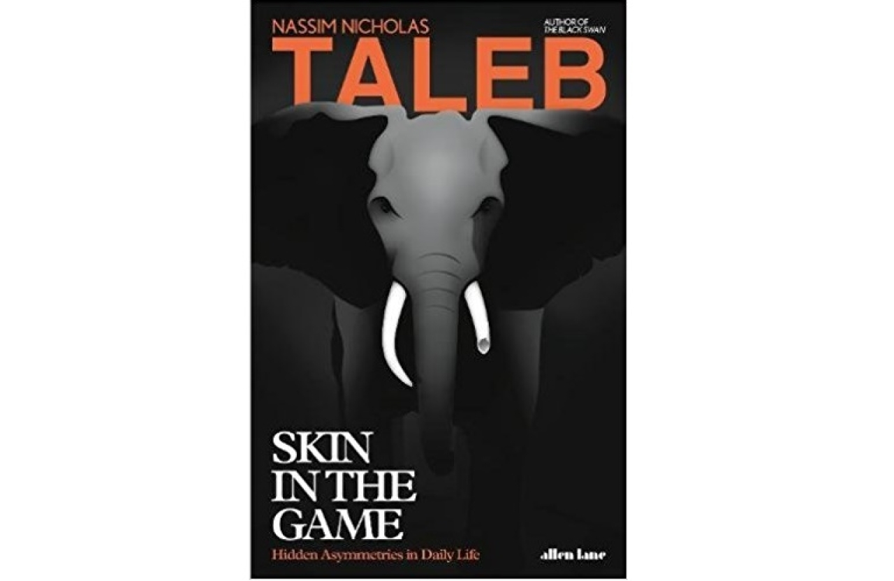 The cover of Skin in the Game