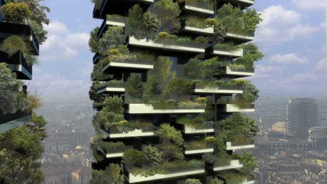 Forests In The Sky: How China Is Combating Air Pollution In Its Industrial Cities