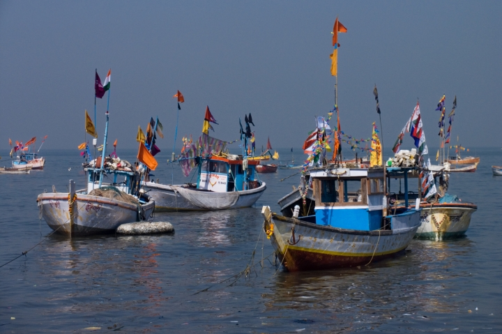 India Refutes New Zealand Claim Of Subsidies Offered To Fisheries Breeding Inefficiency