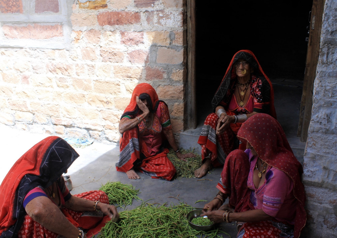 Jangpu Devi at her compound in Guda Bishnoi. For these women, <i>sangri </i>is more than just food.