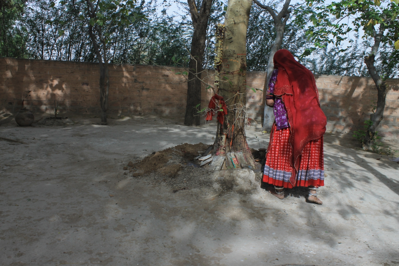 For Bishnoi women, trees are sacred, so is life in all manifestations.