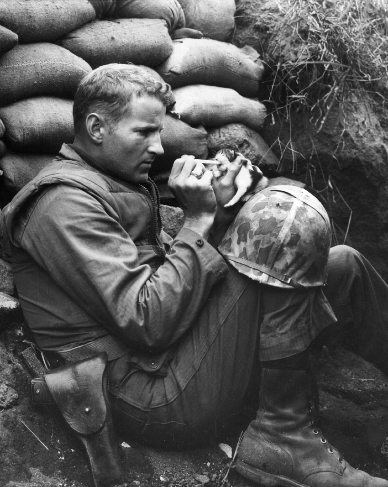 One of the most iconic images from the Korean war where a US Marine feeds an orphan kitten found after a heavy mortar barrage near 'Bunker Hill' . (Photo by Sgt Martin Riley/Getty Images)