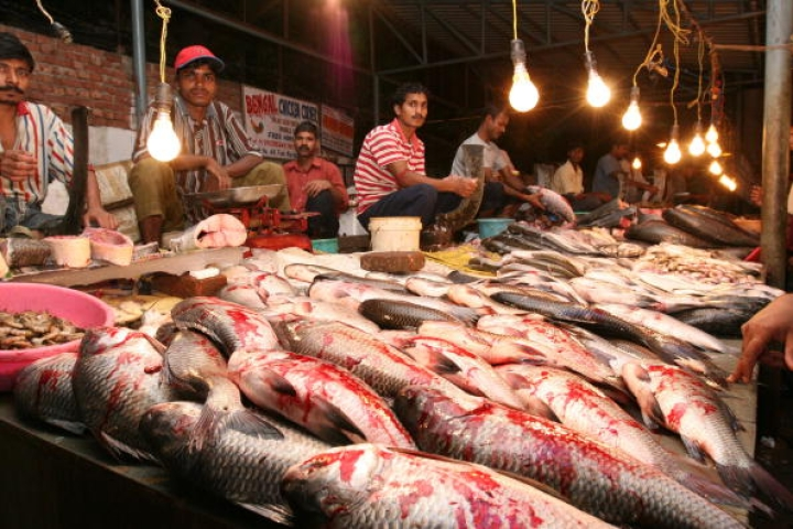 Formalin Fear: Goa Bans Fish Imports From Other States Until The End Of Month