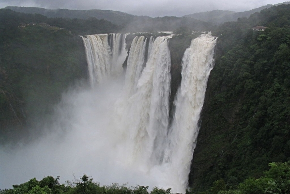Watch: India's Tallest Waterfall In Its Full Glory Following Heavy Rains In Karnataka