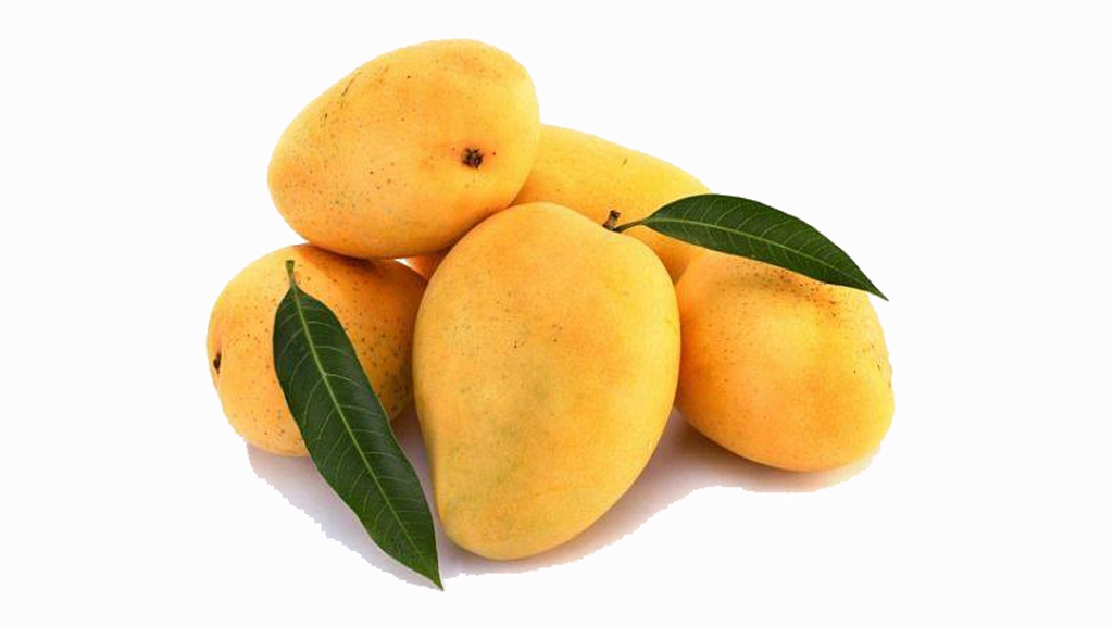 Fight In Kerala Village Over Caste Mangoes The Quint