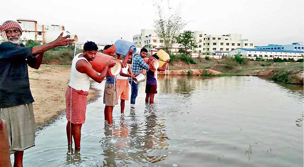 कोरोना इफेक्ट : मधुपुर में नदी में बहाया दूध