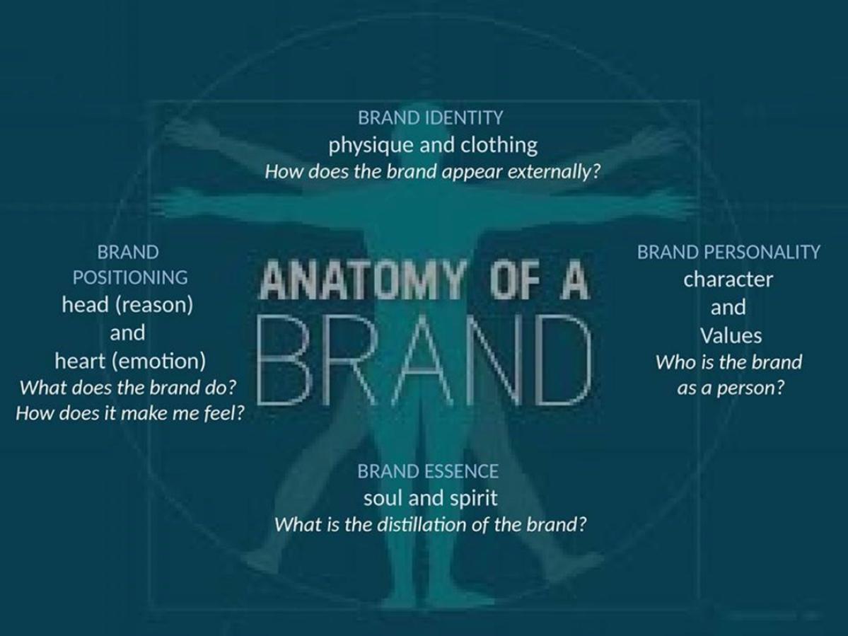 Graphical representation of the framework - 'Brand Anatomy: Human Analogy'