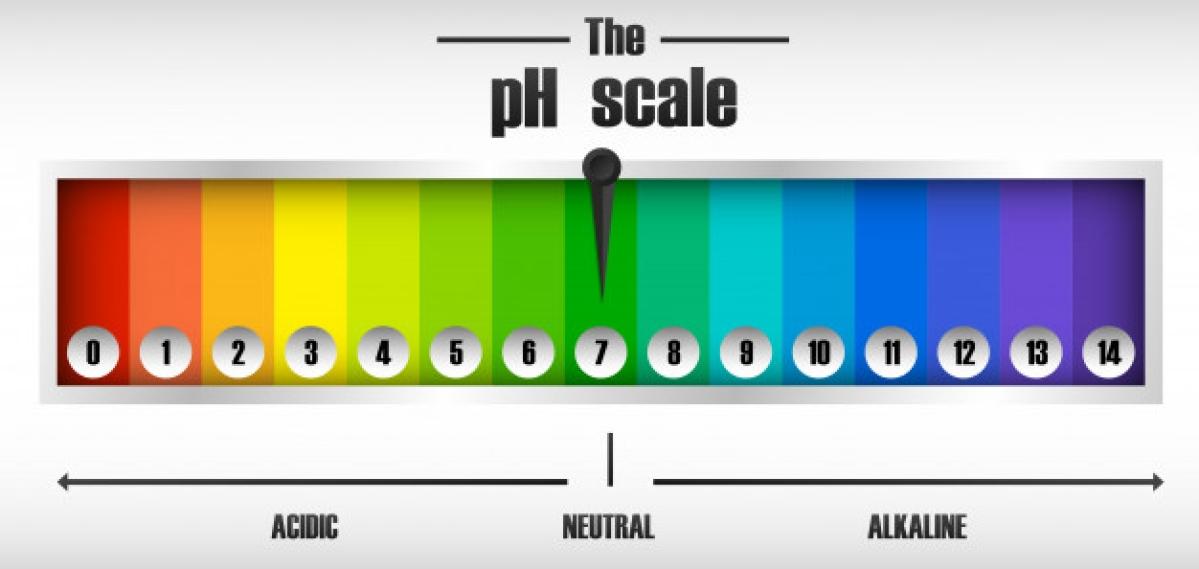 Secret superstars of Sebamed's ads: the NABL, the pH scale, litmus paper
