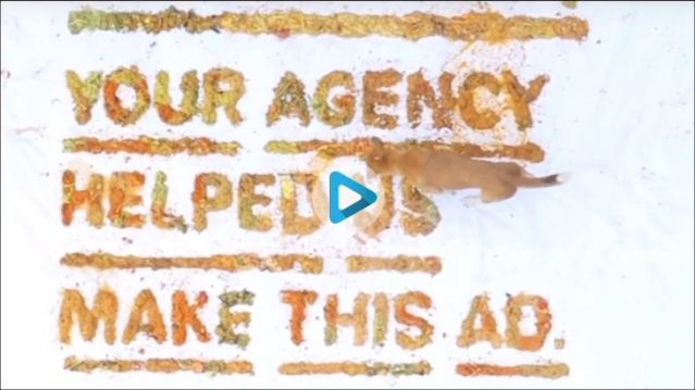 This ad is made using food wasted by agencies...