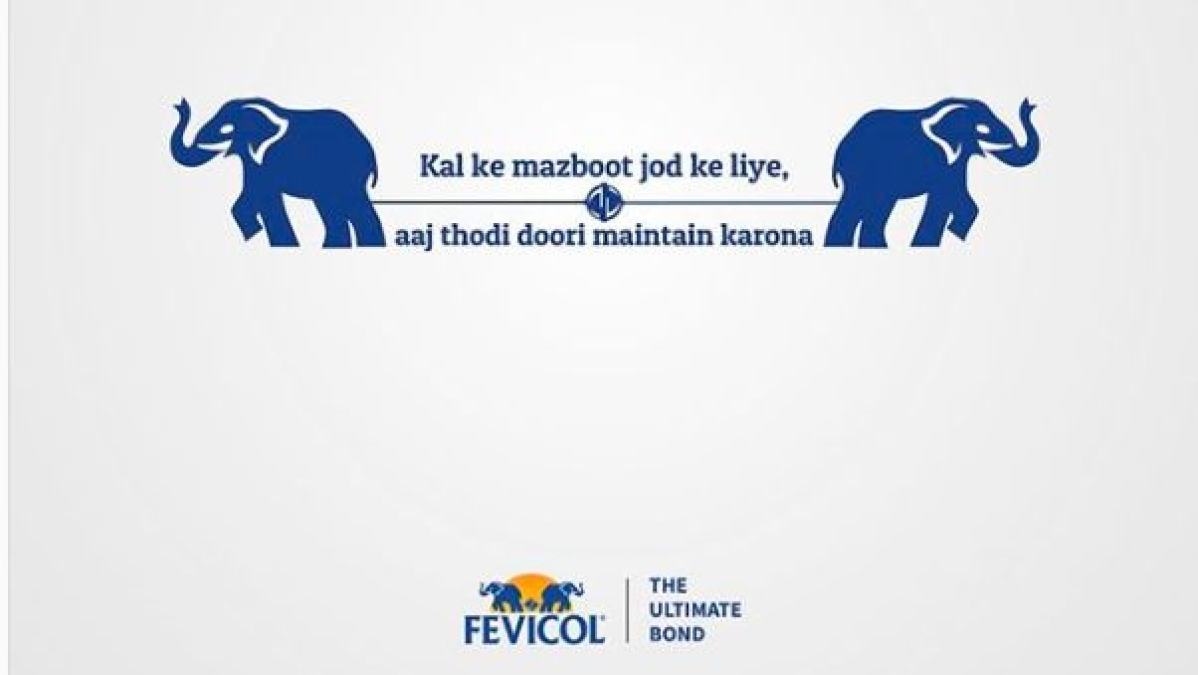 Have You Seen Fevicol S Latest Social Media Post