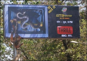 The outdoor campaign for Big RTL Thrill
