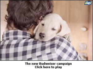 The new Budweiser campaign