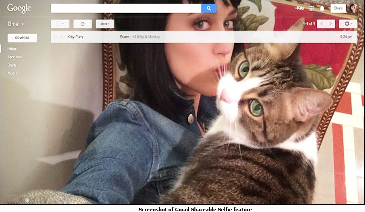 Screenshot of Gmail Shareable Selfie feature