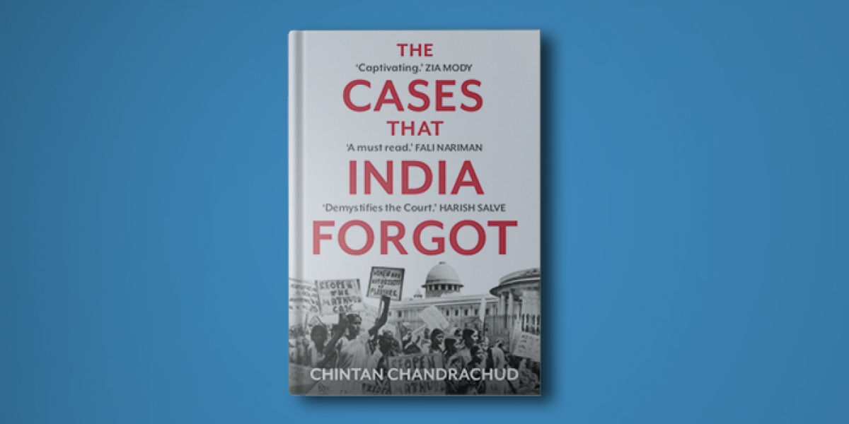 The cases that India forgot Book cover INSIDE