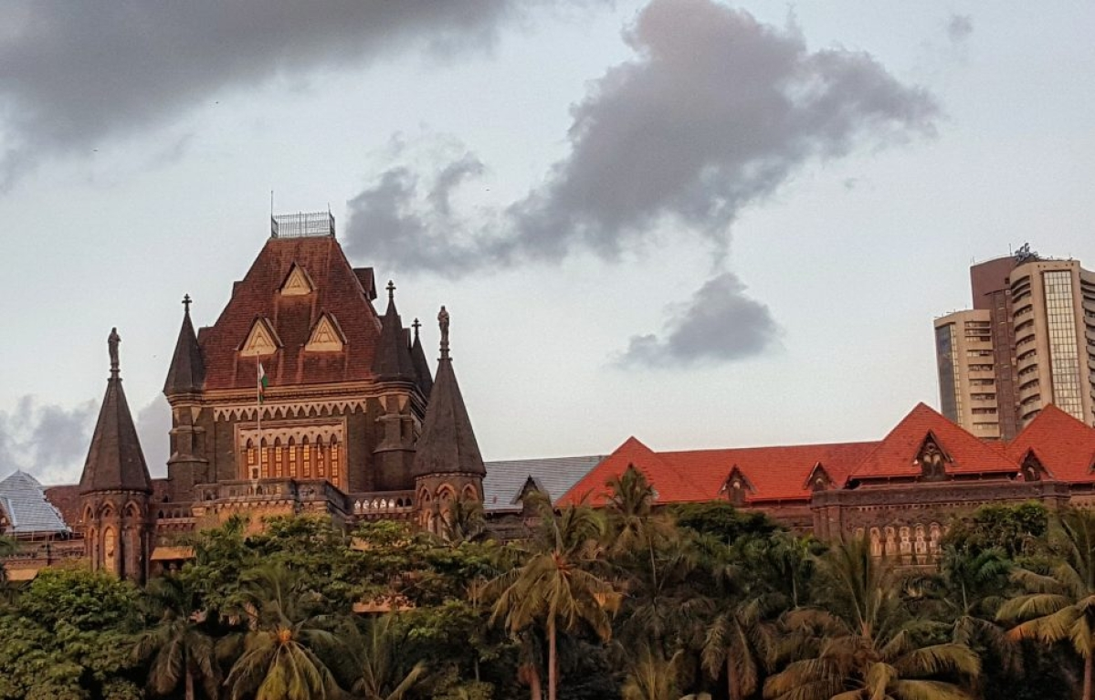 State has funds for Statues, not for Public Health at Wadia Hospital: Bombay HC pulls up Maharashtra Government