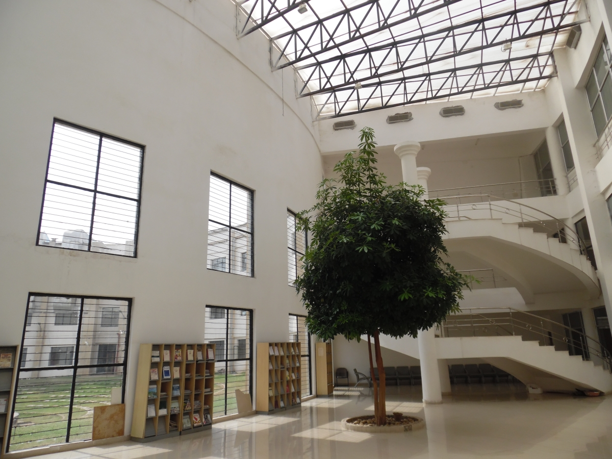 The HNLU Library