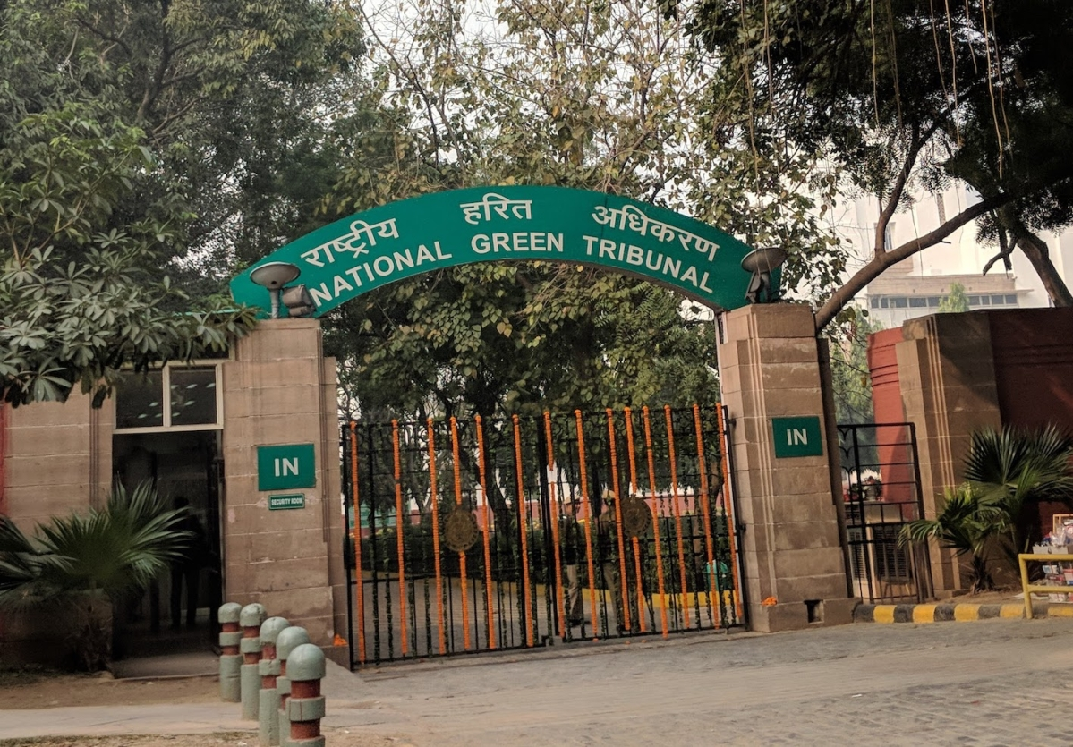 """The National Green Tribunal has almost become defunct. The government is not filling up vacancies, and I think they are in no hurry; they want to make it redundant."""