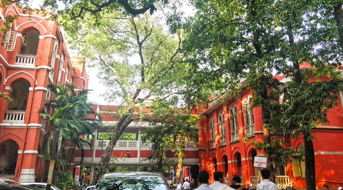 "Madras High Court hauls up litigant who called Judicial Magistrate a ""Bastard"" for Contempt of Court [Read Order]"