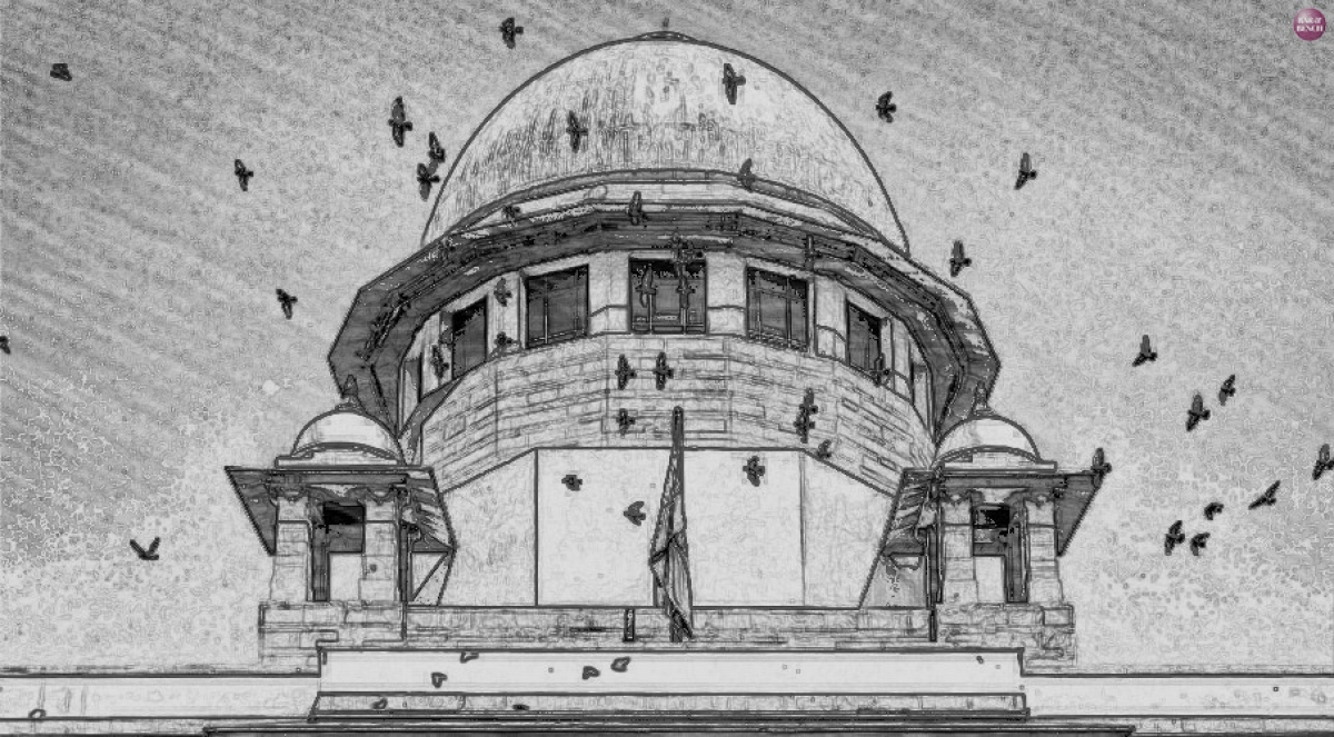 Column: Decoding the Tribunal Judgment