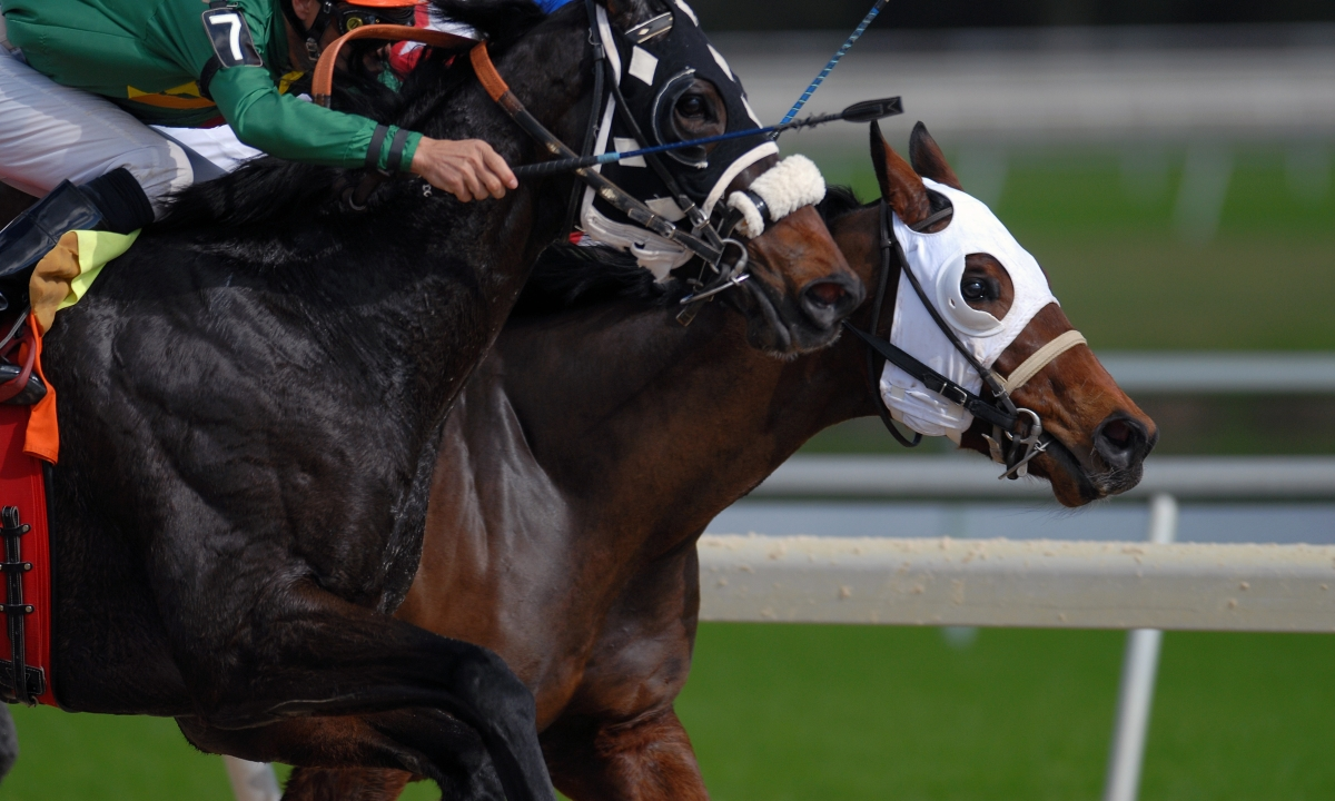Horse Racing: McMudder's Monday Picks
