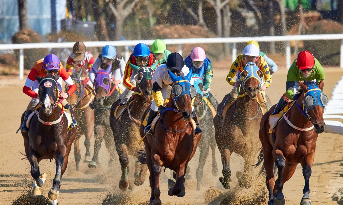 Horse Racing: Tuesdays take Garrity to Arizona and New Mexico