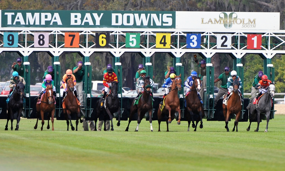 FREE Wednesday SmartCap pick for the 5th race at Tampa Bay Downs