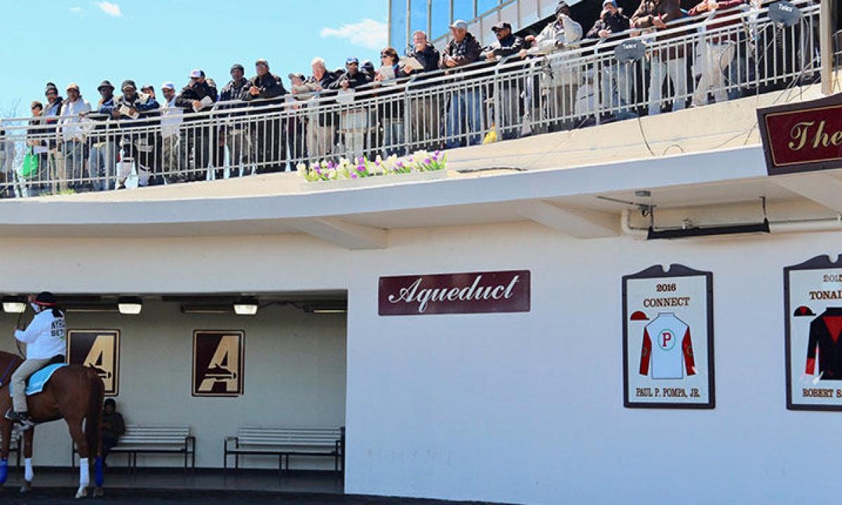 Horse Racing: McMudder's Friday picks