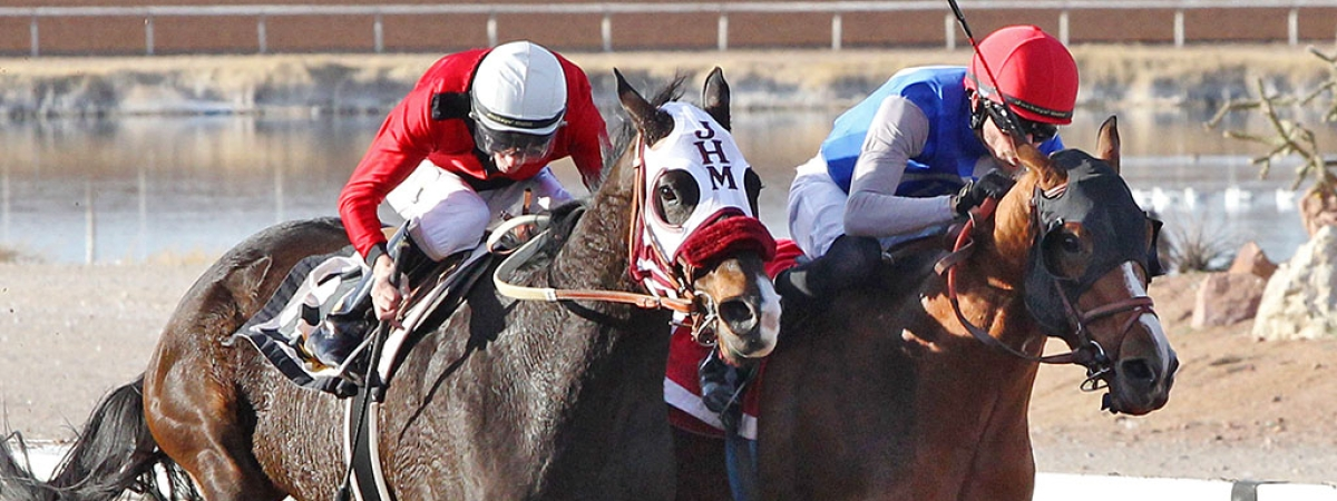 In the Albert Dominguez Memorial Handicap at Sunland Park on Sunday, Jan. 20, 2019, , Blazing Navarone outran Hute by a head to win a furious finish in the one and one-sixteenth mile feature of older New Mexico-breds. Blazing Navarone responded bravely for jockey Ry Eikleberry to take first place honors at 6-1 odds. The winner returned $15 on a $2 win ticket.