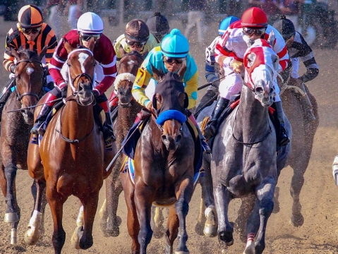 Thoroughbreds Monday - McMudder Picks Parx, Delaware Park