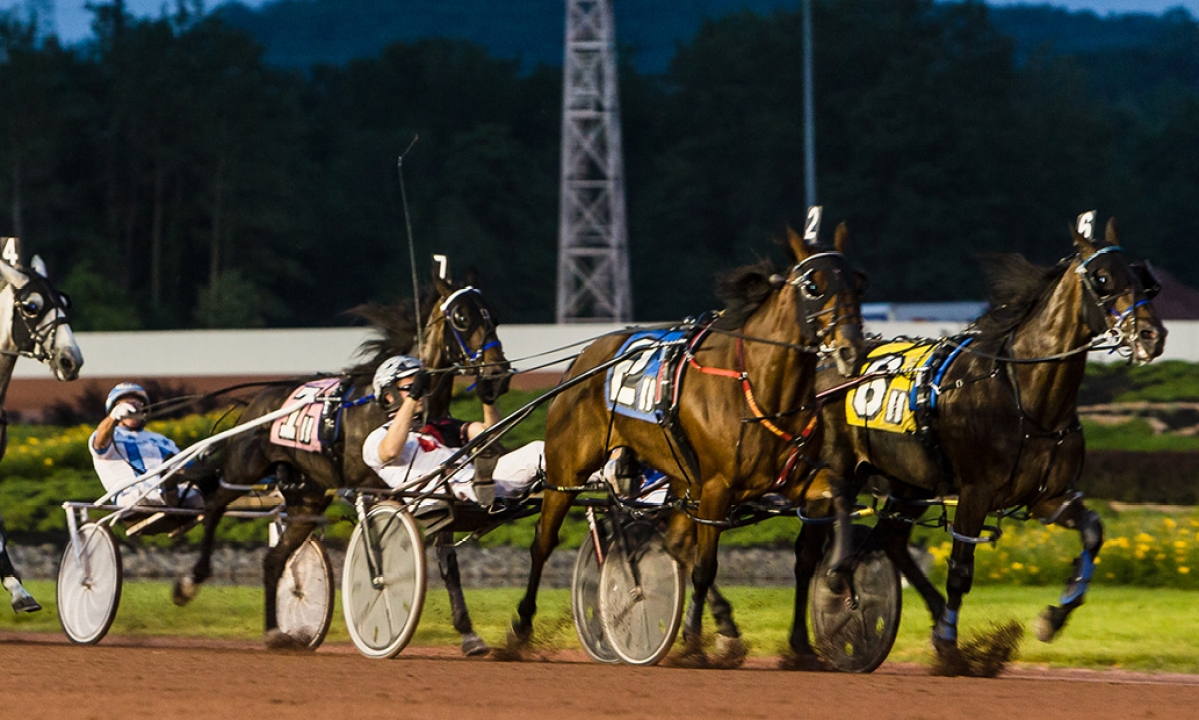 Harness Racing: Mitchell's got three each at Pocono and Yonkers